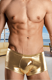 LEATHER LAME Mini Shorts – Gold